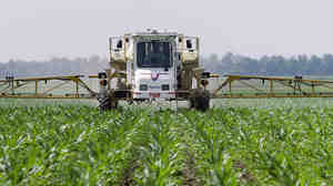 Corn farmer Jerry McCulley sprays the weedkiller glyphosate across his cornfield in Auburn, Ill., in 2010. An increasing number of weeds have now evolved resistance to the chemical.