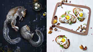 Left, gray squirrel. Right, crostini with squirrel meat, white mulberry, goat cheese, hazelnut and purslane.