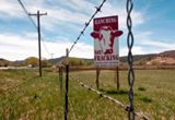 The first local US ban on oil and gas drilling and fracking survived a County vote, but could face another repeal vote in January.  An update on the Mora County, NM ban here: http://bit.ly/ZxTVyj