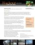 Blackout Case Study 3 - Pat Klotz