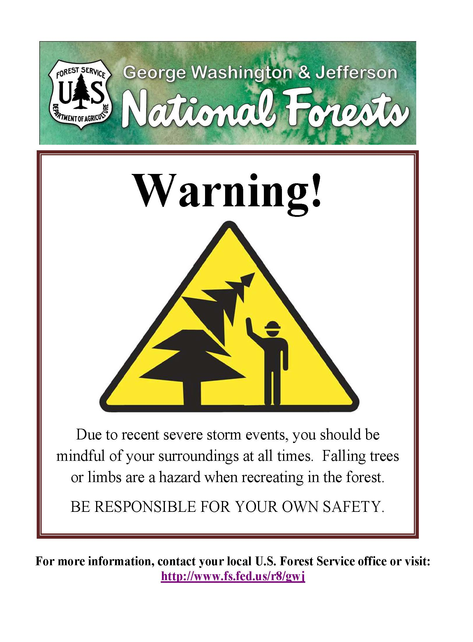 Hazard Tree Safety Poster