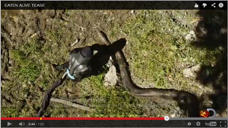 Screen grab from the teaser for the Discovery Channel's Eaten Alive.