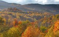 Don't Frack the George Washington National Forest