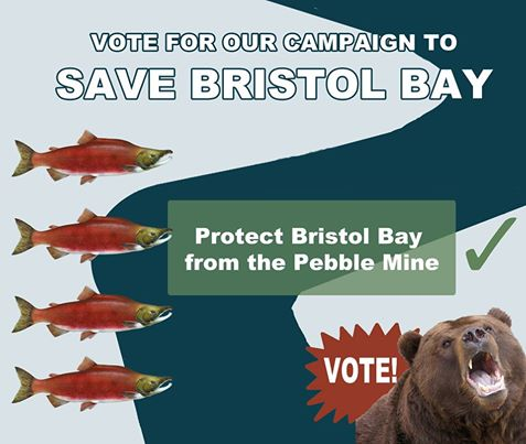 Our Bristol Bay has been nominated for a BENNY Award!   BENNY Awards celebrate activists fighting corporate abuse and changing corporate behavior. When mining giants Anglo American and Rio Tinto withdrew from the Pebble mine we did just that.  Help us win national recognition for this critical fight to protect wild Alaskan salmon by voting now: http://bit.ly/1oZrnKi
