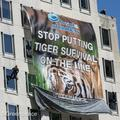 Greenpeace activists offered plea deal in P&G protest