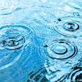 Roseville hosts World Bank on tour for flood warning systems