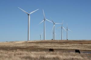 The 147-megawatt Weatherford Wind Energy Center.