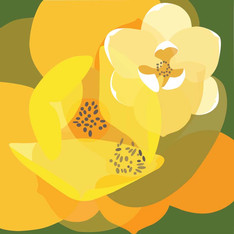 Conference artwork, an abstract overlay of magnolia blooms and leaves in shades of olive, orane, yellow and cream.