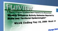 CDC Weekly Influenza Activity Map Gadget Image