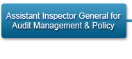 Assistant Inspector General for Audit Management and Policy