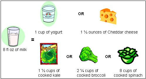 Figure 1: Calcium Content of 8 fl oz of Milk Compared to Other Food Sources of Calcium
