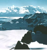 Photo of a Frozen Landscape