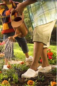 Photo: [Watering the garden]