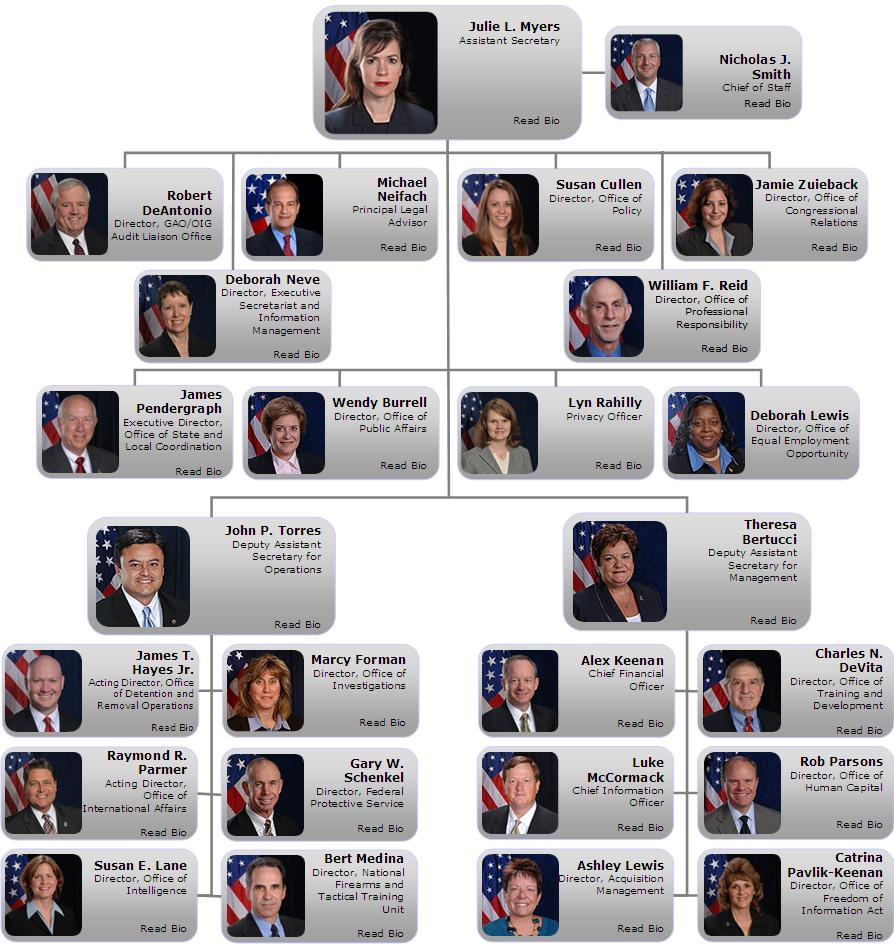 ICE organizational chart
