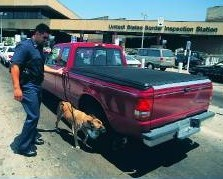 Canine Team screening vehicles at land border port.