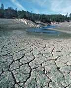 dry and cracked receded lake bed