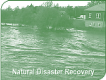 Natural Disaster Recovery - Flood Cleanup