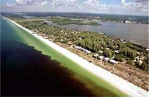 Aerial view of the red tide off the coast of Florida