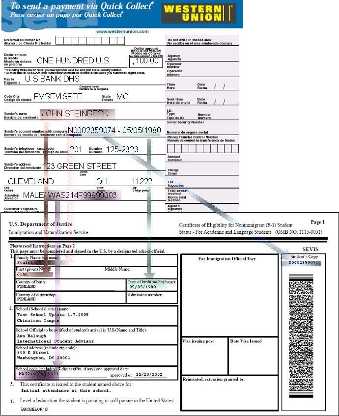 Western Union Quick Pay for U.S. F and M Visas Example Form