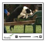 Ready Pets Video - 5 minutes - 16Mb