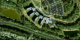 A seamless zoom from the ground to space, using data from Terra-MODIS, Landsat-ETM+, and IKONOS, and starting at NASA Goddard Space Flight Center in Greenbelt, Maryland