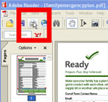 Selecting the Print Box within Adobe Acrobat Reader Version 7