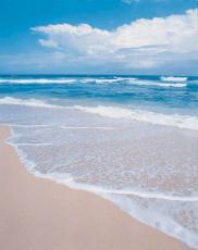 Fotografía de la arena, el océano y el cielo