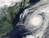 [ Hurricane example image ]