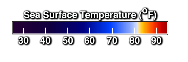 Color bar for sea surface temperatures in degrees F: blues are less than 80 , white is about 82, yellows and reds are above 82