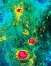 Magellan combined radar and altimetry image of three volcanoes.