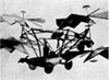 In 1843, Sir George Cayley of Great Britain drew up plans for this aerial carriage that used rotors on opposite sides to cou