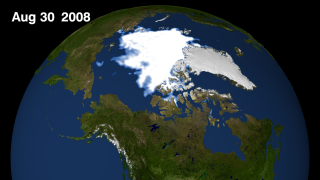 Arctic sea ice still for August 30, 2008