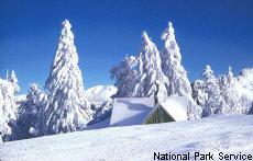 Photograph of a snowy scene