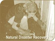 Natural Disaster Recovery - Fungi