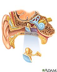 Ilustración del oído y de la anatomía del oído interno