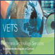 Vets Government Wide Acquisition Contract Logo