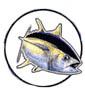 Picture of a tuna