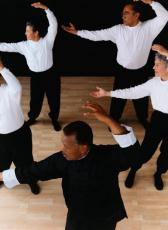 Photograph of seniors doing Tai Chi