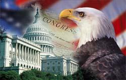 Capitol, eagle, flag.