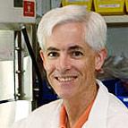 Andrew J. Griffith, Ph.D., M.D.
