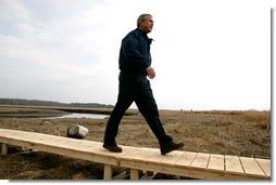 """Commemorating Earth Day, President George W. Bush visits the Wells National Estuarine Research Reserve in Wells, Maine, Thursday, April 22, 2004. During his visit, President Bush announced a program to increase the amount of wetlands in the United States. """"To do so, we will work to restore and to improve and to protect at least three million acres of wetlands over the next five years,"""" said the President.  White House photo by Eric Draper"""