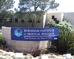 Burnham Institute for Medical Research Cancer Center