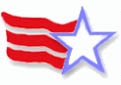 ILUSA Logo with Star and  stripes