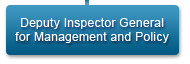 Deputy Inspector General for Management and Policy