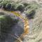 Salmon Creek Estuary Restored.