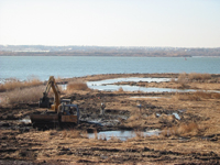 Construction of the Fort McHenry marsh.