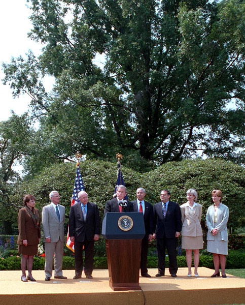 President Bush makes a statement about global climate change on Monday, June 11 at the White House.
