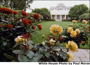 Pictured is the Rose Garden viewed from the West Wing. To the left is the West Colonnade. White House photo by Paul Morse