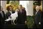 "President George W. Bush and Vice President Dick Cheney participate in the annual pardoning of the National Turkey in the Rose Garden Nov. 17, 2004. ""We are a nation founded by men and women who deeply felt their dependence on God and always gave Him thanks and praise. As we prepare for Thanksgiving in 2004, we have much to be thankful for: our families, our friends, our beautiful country, and the freedom granted to each one of us by the Almighty,"" said the President in his remarks.  White House photo by Paul Morse"