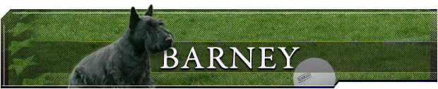 Link to Barney's Front Page